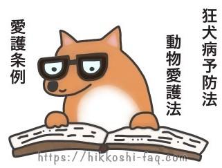 犬がペットに関する法令などを読んでいます。