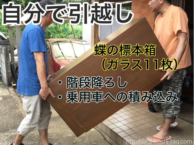 蝶の標本箱を運んでいる二人の男性です。