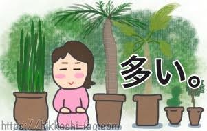 植物がやたら多い引越しです。