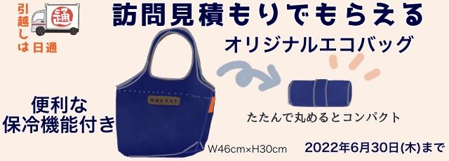 日通の訪問見積もりキャンペーンでもらえる保冷機能付きエコバッグのイメージです。